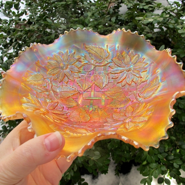 Antique Northwood Poinsettia & Lattice Marigold Carnival Glass Bowl