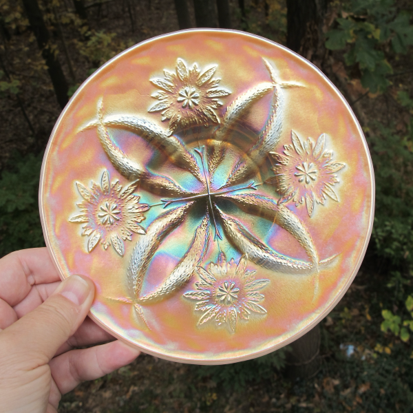 Antique Dugan Four Flowers Peach Opal Carnival Glass Plate