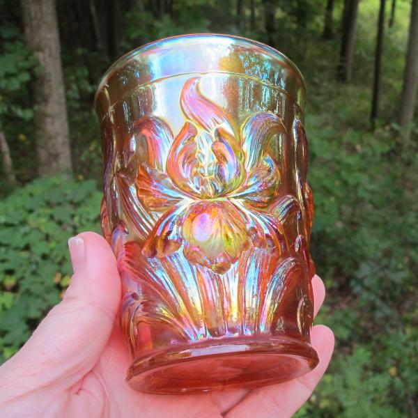 Antique Dugan Heavy Iris Pumpkin Marigold Carnival Glass Tumbler